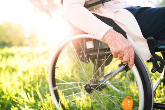 Top 5 Recreation Options for Wheelchair Users